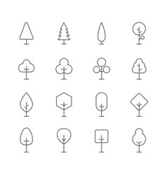 trees line icons set vector image
