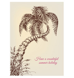 twisted palm tree summer vacation background vector image vector image