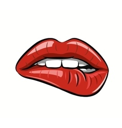 womans red lips vector image
