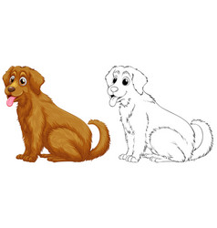 Animal outline for golden retriever dog vector
