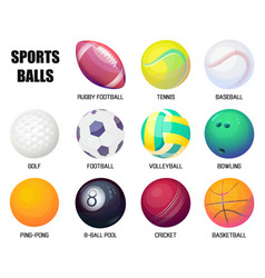 balls for rugby and baseball basketball vector image