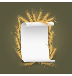 Banner Label template paper sheet with wheat vector image