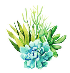 Bright watercolor plants tiny color bouquet vector