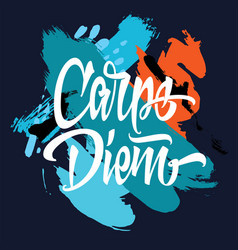 Carpe diem printed t-shirt vector