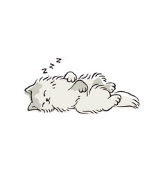 cartoon cat sleeping in cute position vector image