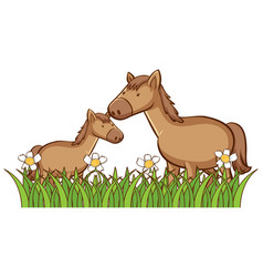 isolated picture two horses vector image