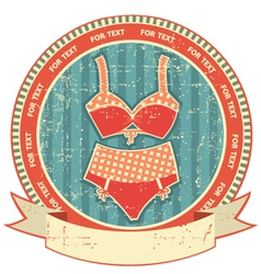 Lingerie label on old paper textureVintage retro vector
