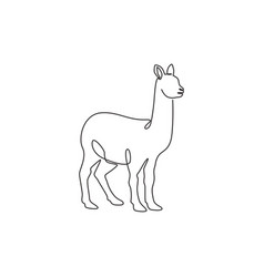 One continuous line drawing funny alpaca vector
