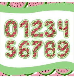 Pink watermelon numbers 1234567890 in vector image