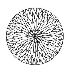 round mandala ornament vector image