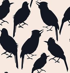 tropic bird vector image