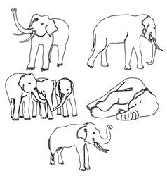 elephant activities vector image vector image