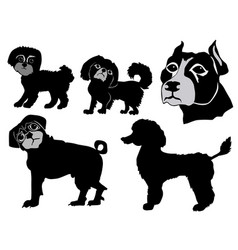 set of dogs vector image vector image
