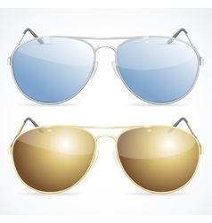Aviator Sunglasses Set vector image