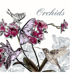 Beautiful background with orchid flowers vector