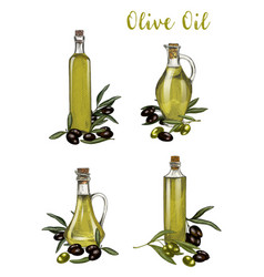 bottles with olive oil sketches branch with berry vector image