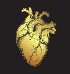 human heart of gold line art and dotwork vector image