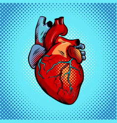 Human heart pop art style vector