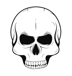 skull in monochrome and vintage tattoo style vector image