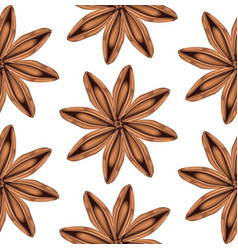 star of anise vector image