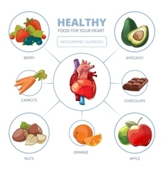Heart care infographic Healthy foods vector image vector image