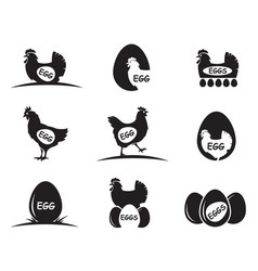 Chicken and eggs icons vector