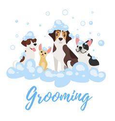 Dogs in soap foam vector
