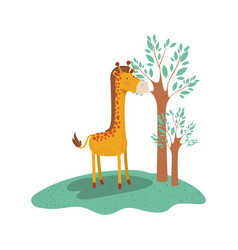 giraffe cartoon in forest next to the trees in vector image