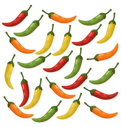 Hot chili peppers pattern detailed colorful vector