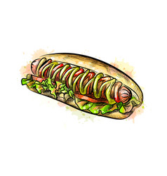 Hot dog from a splash of watercolor vector