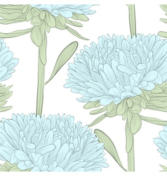 seamless background with blue flowers aster vector image