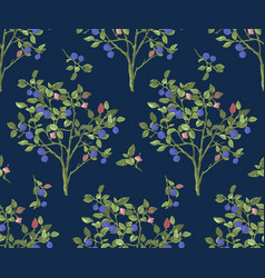 seamless pattrn with blueberry bushes vector image