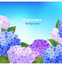 Hydrangea Flowers Background vector image vector image
