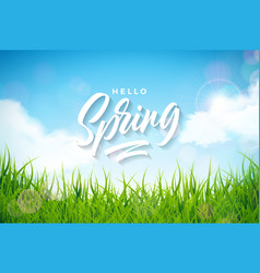 spring with green grass on vector image