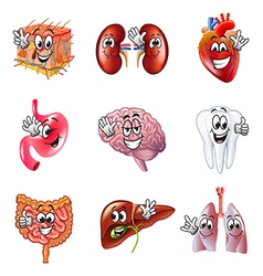 Funny cartoon human organs icons set vector image