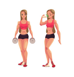 woman bodybuilder holding dumbbells and drinking vector image vector image
