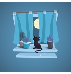 A cat sits on the windowsill Night vector image