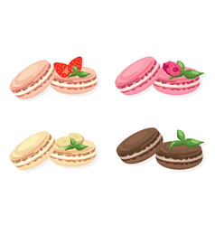 delicious macaroons set for menu vector image