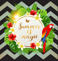 summer background with red parrot vector image