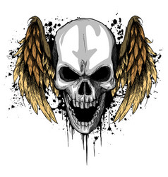 A human skull with wings vector