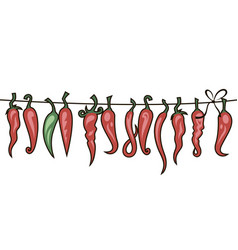 chili peppers set vector image