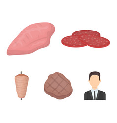 Pieces of salami turkey fillet grilled steak vector