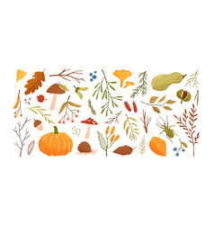 autumn set collection hand drawn fallen leaves vector image