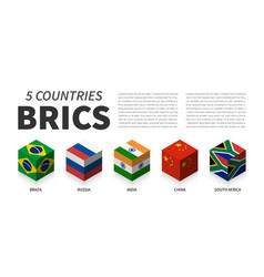 Brics flag association 5 countries 3d cubic vector