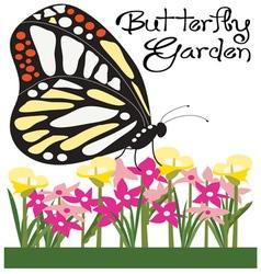 Butterfly Garden vector