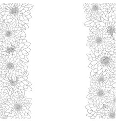 Chrysanthemum outline border isolated on white vector