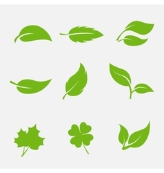 collection of images the leaves trees and plants vector image