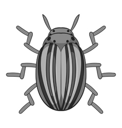 Colorado beetle icon cartoon style vector