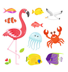 flamingo and jellyfish seagull and crab animals vector image