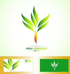 Green orange tree shape logo vector image